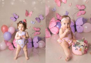 Zwillinge Schmetterling